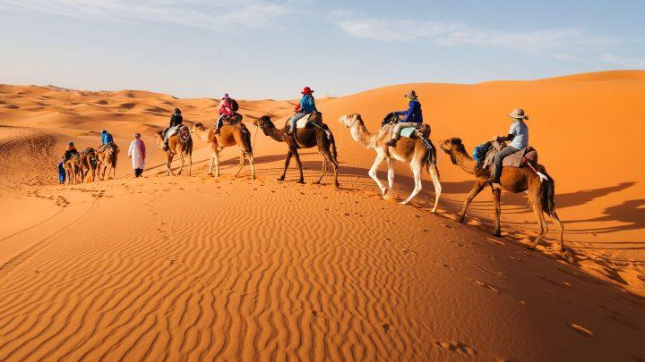 El-Sahara-un-desierto-unico-1440x810